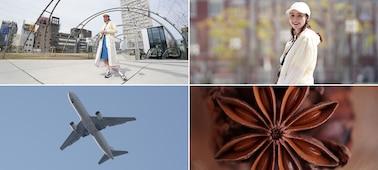 Δείγματα εικόνων με χρήση φακού macro, τηλεφακού, φακού σταθερής εστιακής απόστασης και ευρυγώνιου φακού